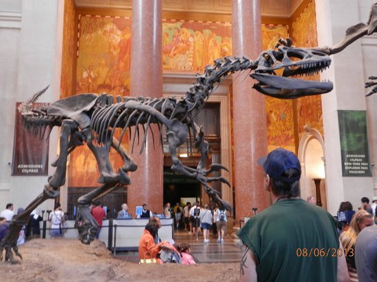 American Museum Of Natural History Entry Fee
