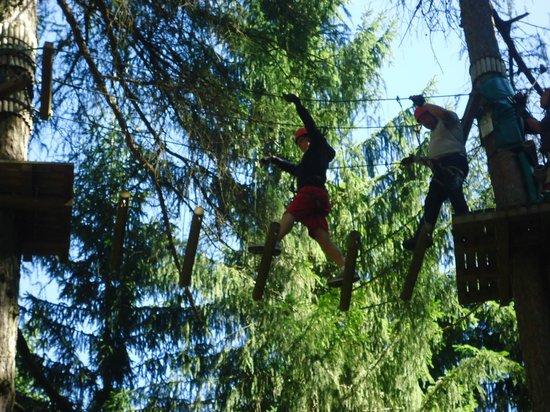 Adventure Dolomiti - Acropark Castello Molina: scala mobile....