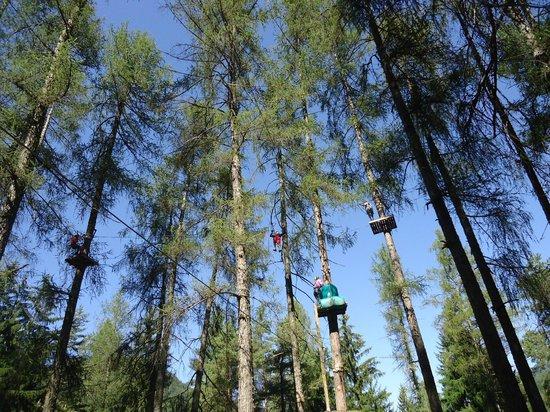 Adventure Dolomiti - Acropark Castello Molina: massima altezza 18 mt