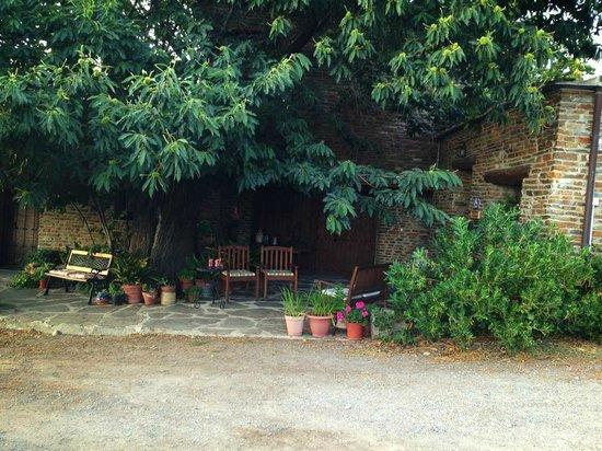 El CastaNar Nazari: Parte exterior donde relajarse al frescor de los arboles.
