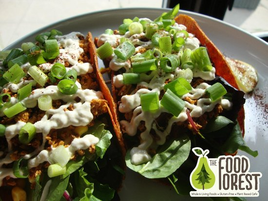 The Food Forest : Living Tacos