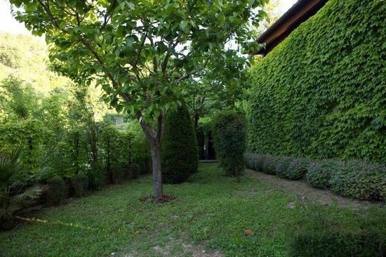 Agriturismo La Rocca: Giardino