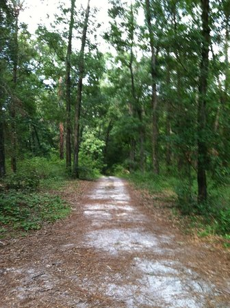 Poe Springs Park: short nature trail at Poe Springs