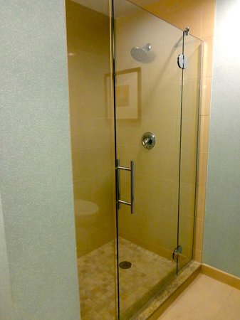 HYATT house Fort Lauderdale Airport & Cruise Port: LARGE SHOWER