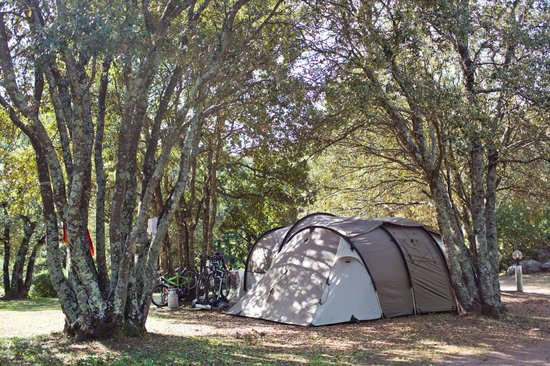 Camping La Vetta : 4-star camping, 20 acres of well shaded plots. Camping 4 étoiles, 8,5 hectares ombragés.