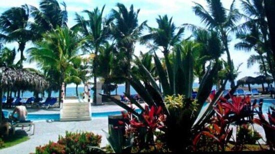 Viva Wyndham Tangerine : stunning pool @ viva T ♡