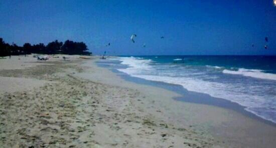 Viva Wyndham Tangerine : Gawjus beach @ viva T