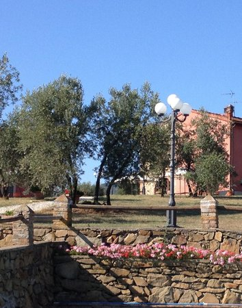 Fattoria Castellina: View from the pool