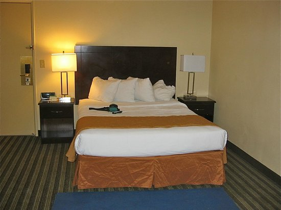Quality Inn & Suites: King size bed