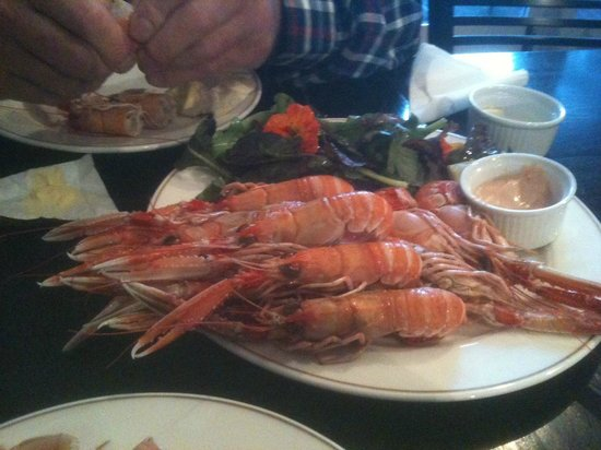 Summer Isles Hotel: Dublin Bay Prawns in the bar
