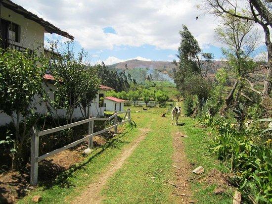 Hotel Campestre Hacienda Yanamarca: Vista de la entrada