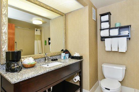 Hampton Inn Petersburg - Ft. Lee: Guest Bath Room