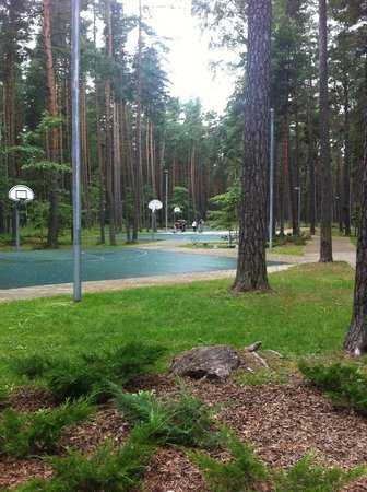 jurmala basketball