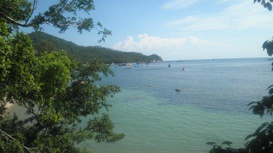 Queen Resort Koh Tao: plage