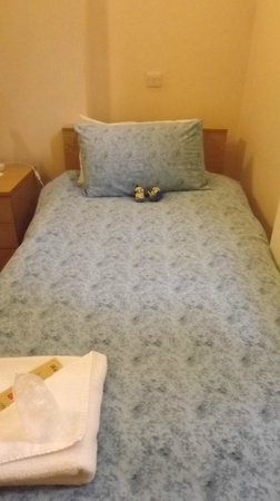 LSE Passfield Hall: simple twin bed in single room