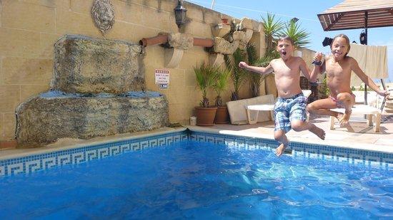 Tal-Bir Farmhouse Gozo : Pool