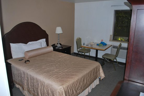 Rodeway Inn Downtown: the room
