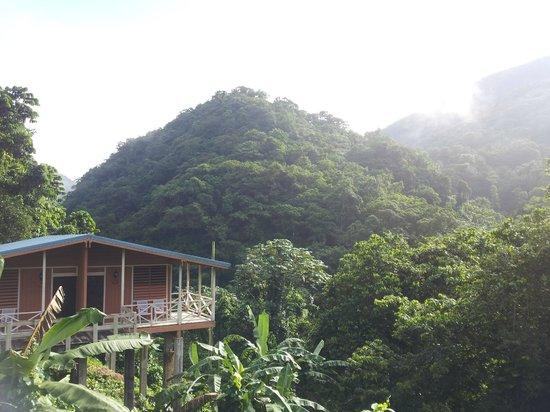 Casa Grande Mountain Retreat: Amazing Cabin