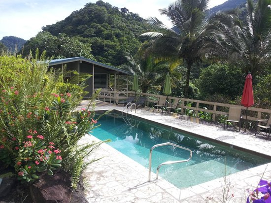 Casa Grande Mountain Retreat: The 10ft pool! Warm water