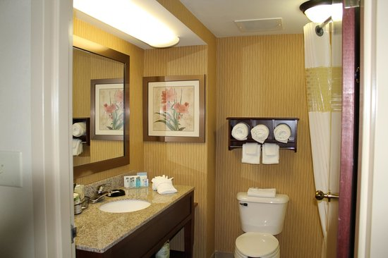 Hampton Inn Carrollton: Guest Bathroom