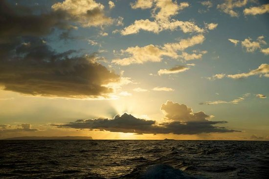 Captain Andy's Sailing Adventures: Sunset from the Southern Star