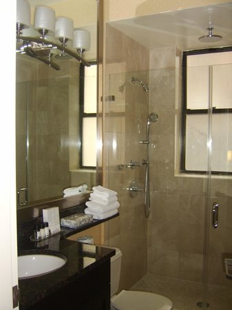 Hotel Metro: The bathroom with a wonderful shower!