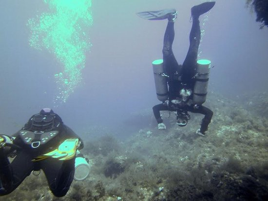 Gozo Diving: Billy Upside Down
