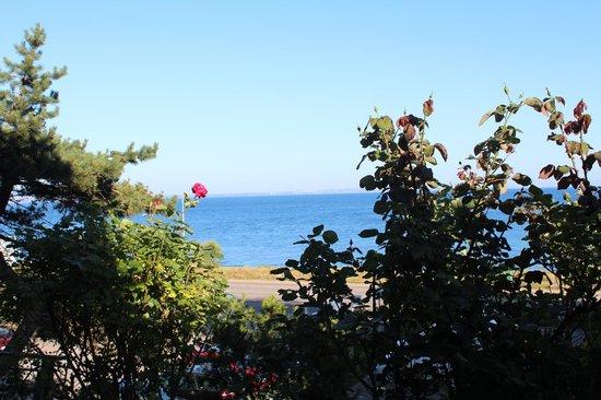 Bogeholmen: Vue de la chambre sur la mer