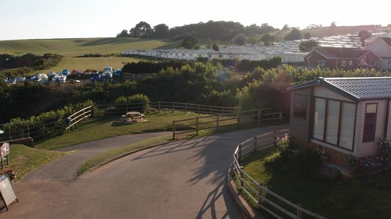 Ladram Bay Holiday Park: the caravan site