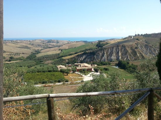 Agriturismo Il Borgo Degli Ulivi: vista dall'alto