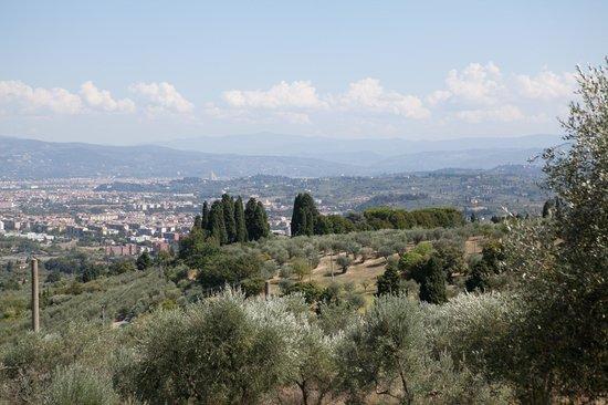 Villa La Pergola: View on Santa Maria del Fiore side