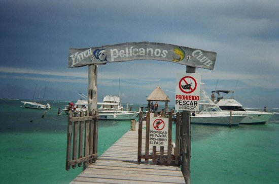 Cancun Mermaid - One Day Tour : The marina