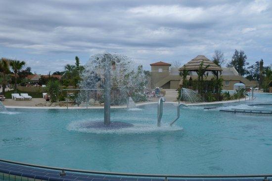 La grande piscine picture of camping le dauphin argeles for Camping argeles sur mer avec piscine