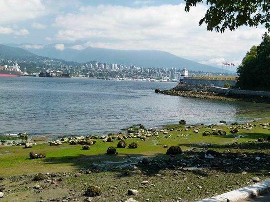 Brockton Point Lighthouse: Vancouver – Brockton Lighthouse auf Burrard Inland (c) Frank Koebsch (4)
