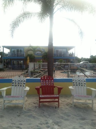 Bayview Plaza Waterfront Resort: View of pool, palm tree and beach!