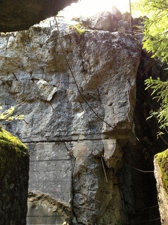 Wolf's lair - Wolfsschanze: Inside collapsed bunker