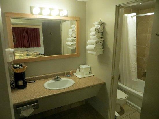 Econo Lodge: Bathroom