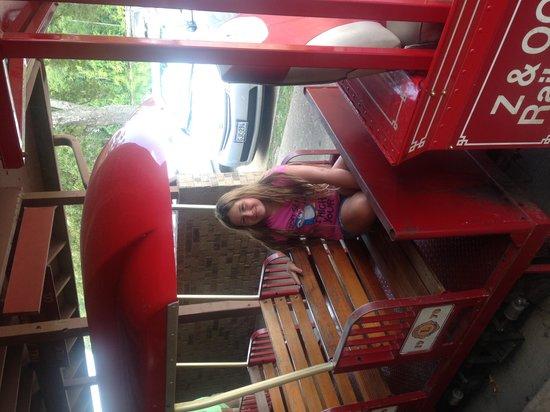 Ellen Trout Zoo: The train
