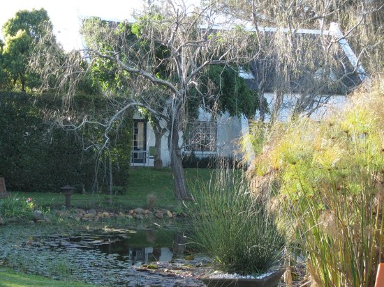 Rothman Manor: Garten