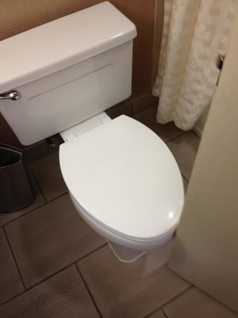 The Saratoga Hilton: door catches toilet in minuscule bathroom