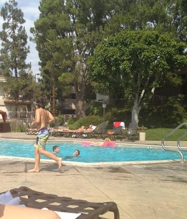 Oakwood Apartments - Woodland Hills: just a simple afternoon at the pool