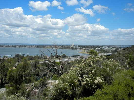 Fraser Avenue Lookout