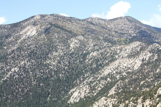 Mount San Jacinto State Park and Wilderness : Mount San Jacinto