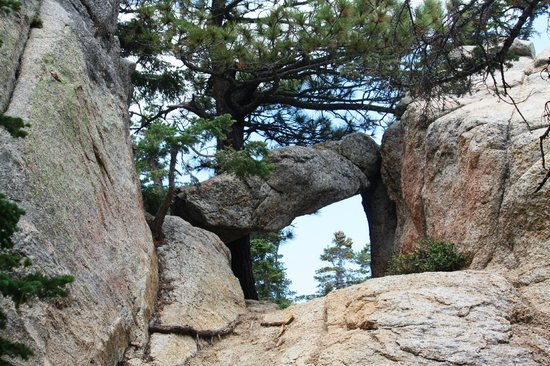 Mount San Jacinto State Park and Wilderness : Some rocks