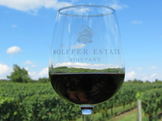 Wolffer Estate Vineyard: A tasting!