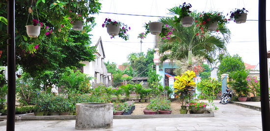 Petunia Garden Homestay : getlstd_property_photo
