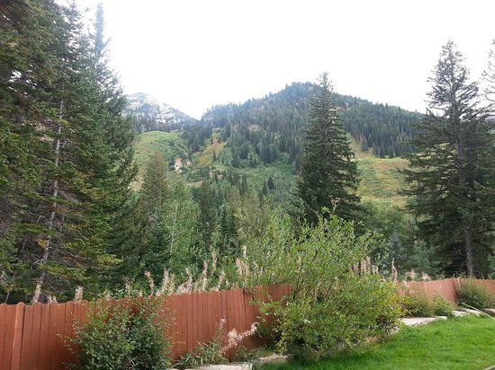 Lodge at Snowbird: View from pool area