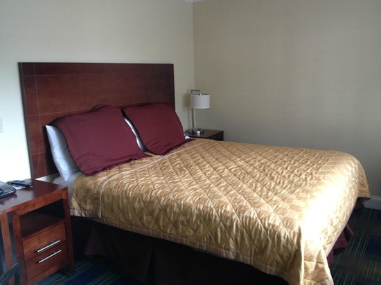 Travelodge by Fisherman's Wharf : Renovated Room View 1