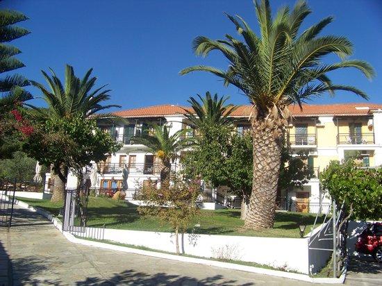 Hotel Panormos Beach Skopelos: hotel