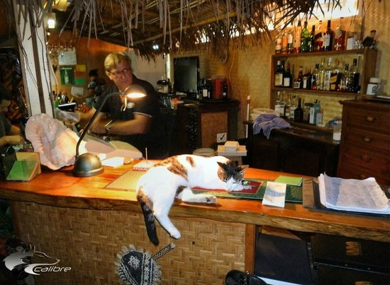 Vaima Polynesian Bar and Restaurant : Some bar patrons can't hold their liquor!